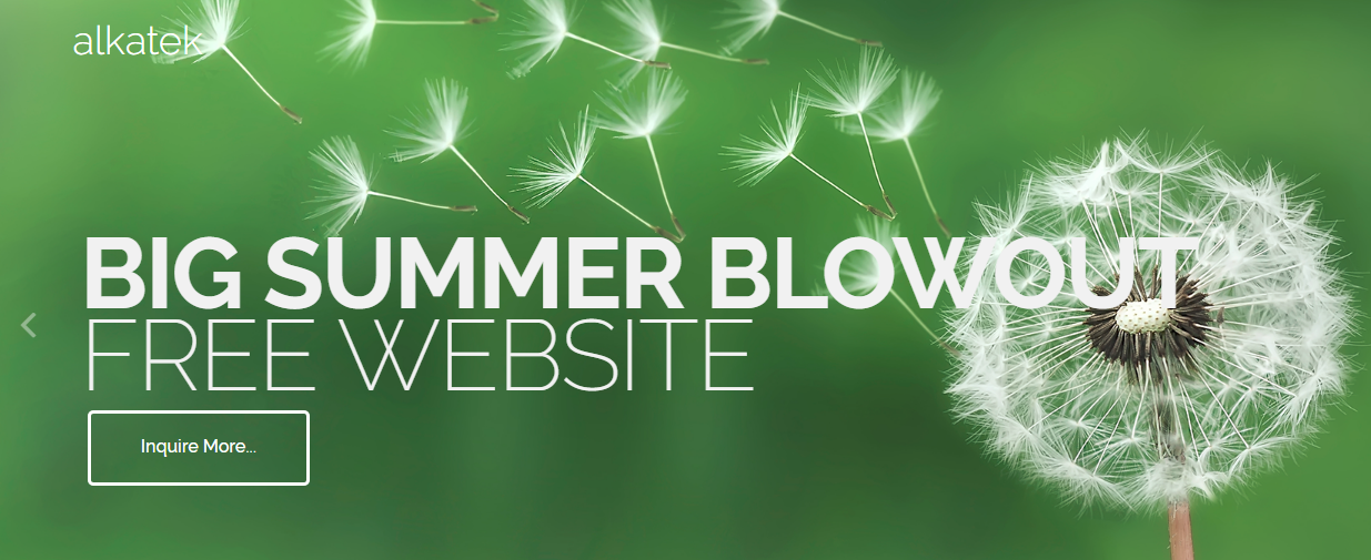BIG Summer Blowout - FREE Professional Website